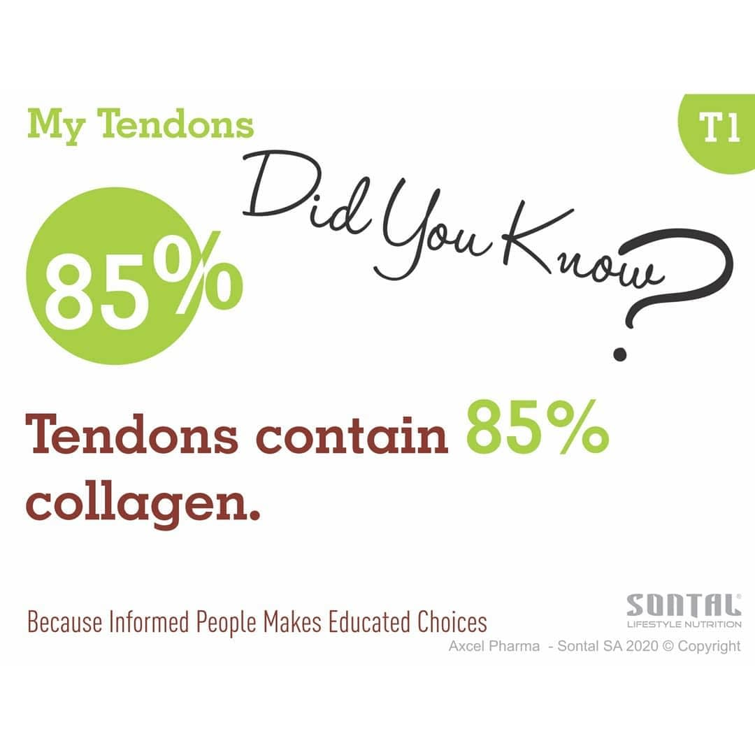 Did you Know - 85% Tendons